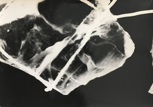 , 'Fotograma,' 1966, Aldo de Sousa Gallery
