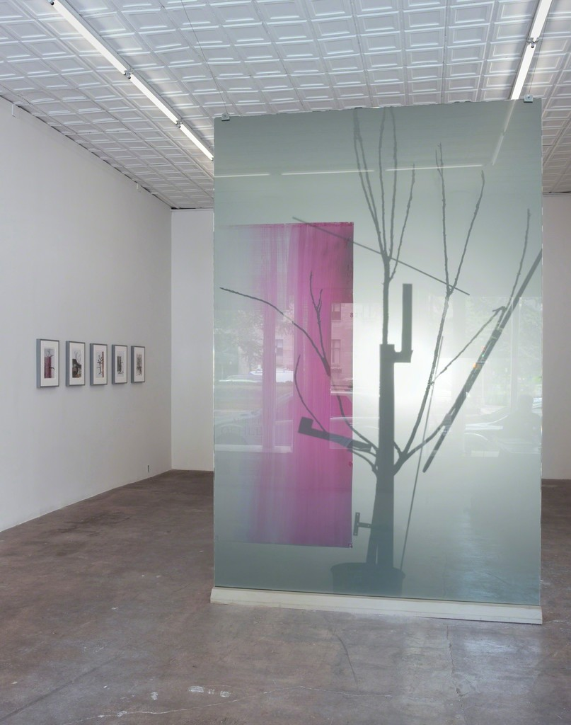 """ALBERT OEHLEN: 'Home & Garden' Annex""