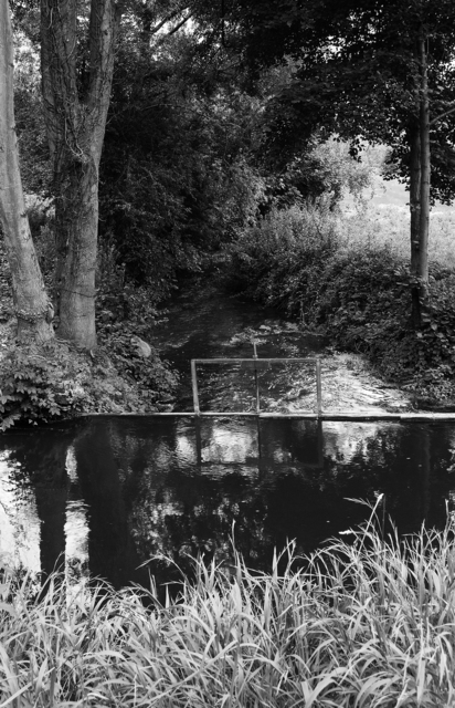, 'Shadow and Light #1,' , Soho Photo Gallery