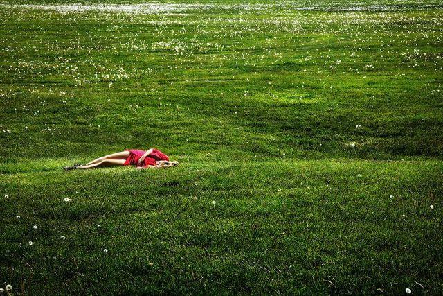 David Drebin, 'Field of Dreams', 2012, Photography, épreuve couleur / C-print, Galerie de Bellefeuille