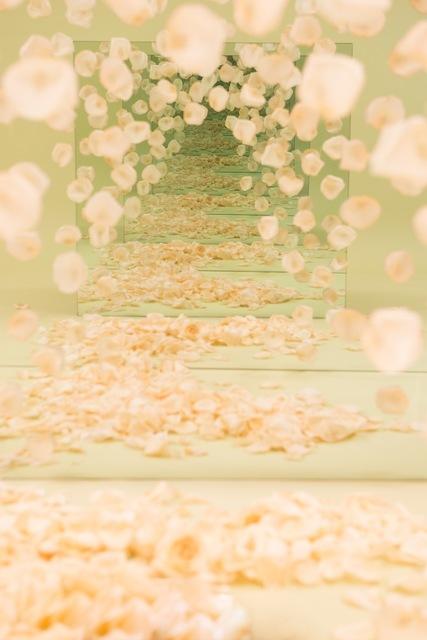 , 'Peach Petal Speculation,' 2017, Johannes Vogt Gallery