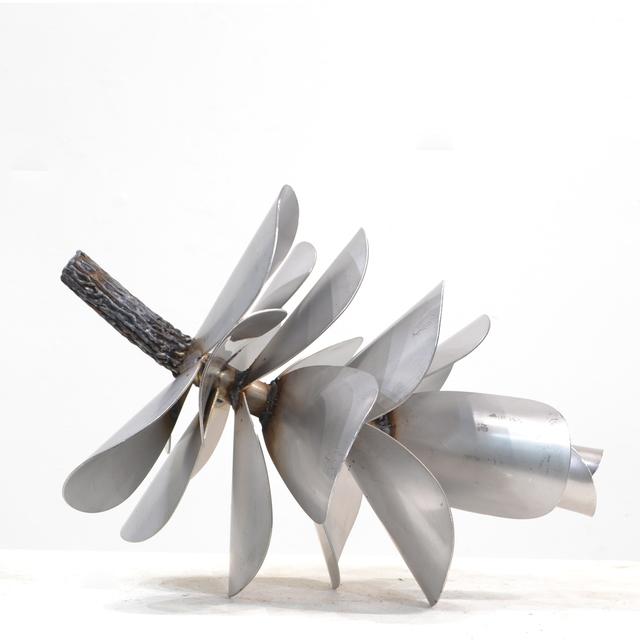 , 'Pine Cone - Blasted,' 2017, Petroff Gallery