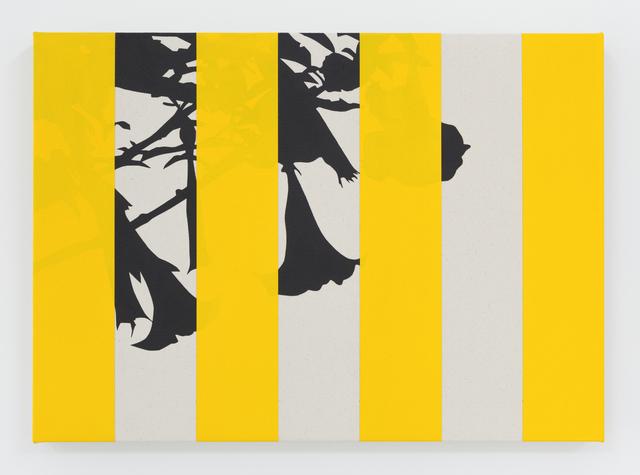 , 'Borracherro (Yellow),' 2016, Instituto de Visión