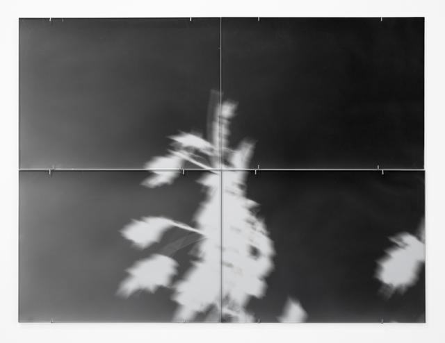 , 'untitled,' 2012, SPROVIERI
