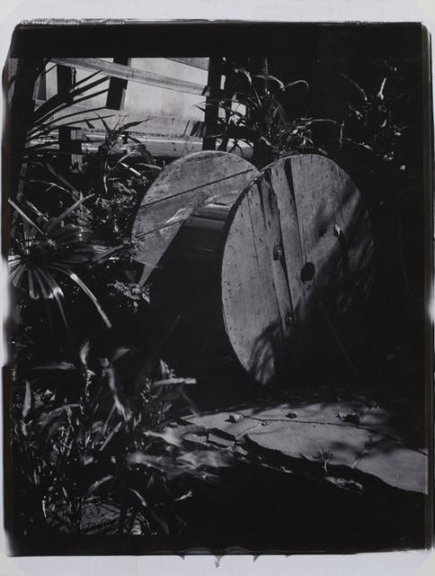 , 'A Place in the sun - Sakuragaoka, Shibuya-ku-,' 1983, Taka Ishii Gallery