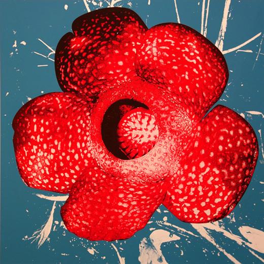 Daido Moriyama, 'Rafflesia', 1999, Gallery TAGBOAT
