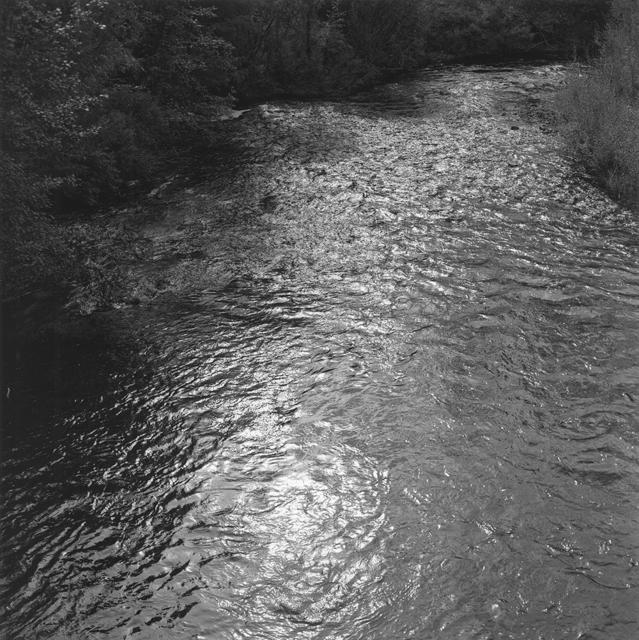 , '激流河 Jiliu River,' 2017 , C14 Gallery