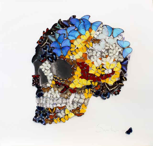 , 'Butterflies Skull,' 2016, Eden Fine Art