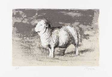 Sheep in Stormy Landscape (Cramer 393)
