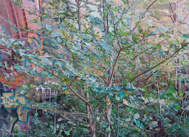 , 'Under the Bridge Merry Creek,' 2015, Hill Smith Gallery
