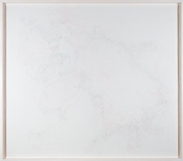 , 'Aufzeichnungen über einen Organismus von 2007 bis 2017,' 2007-2017, Galerie Hubert Winter