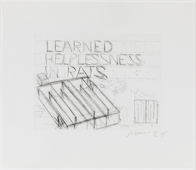 , 'Learned Helplessness in Rats,' 1988, Susan Sheehan Gallery