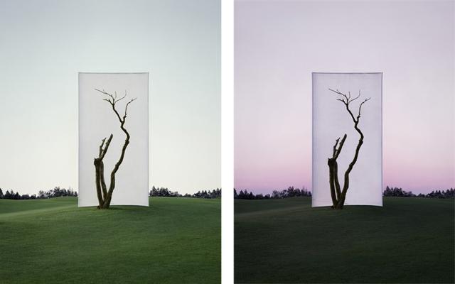 , 'Tree... #1_1 & #1_2,' , Gallery Hyundai