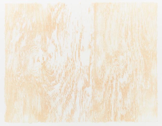 , 'Skinless,' 2016, Galeria Raquel Arnaud