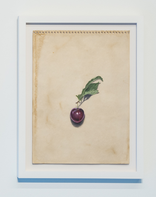 , 'Plum,' 2019, Ever Gold [Projects]