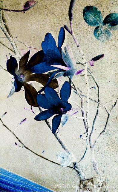 , 'Magnolia 10,' 2018, Galerie Marie-Robin