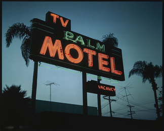 TV Palm Motel, from the Future Fossils series