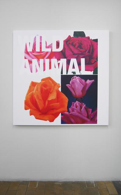 , 'Wild animal,' 2015, V1 Gallery