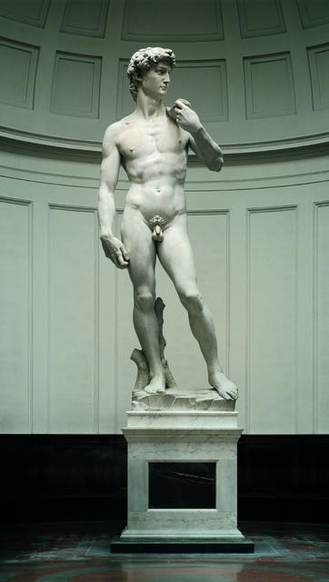 Michelangelo Buonarroti, 'David', 1501-1504, Sculpture, Carrara marble, Galleria dell'Accademia