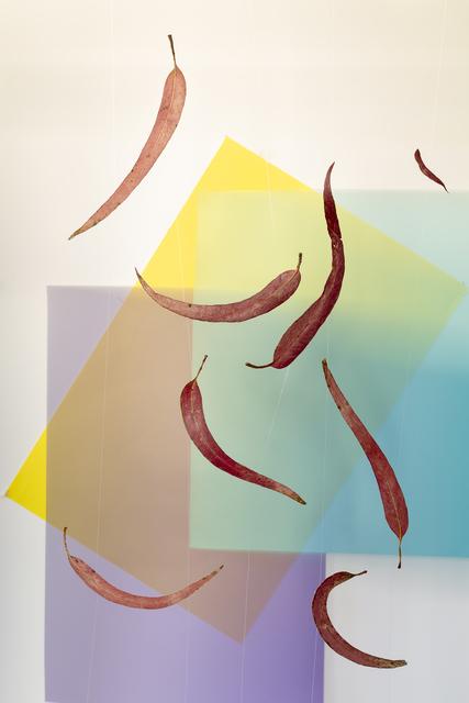 , 'Trazos,' 2017, Mite
