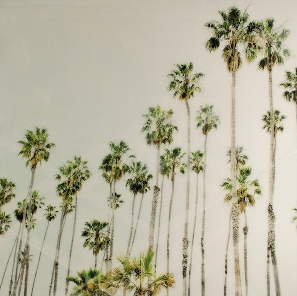 , 'Palm Trees 2,' 2014, parts gallery