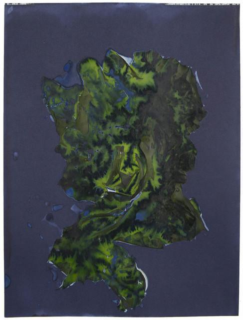 , 'For Anna, Vol. II, Plate 15,' 2016, EUQINOM Gallery
