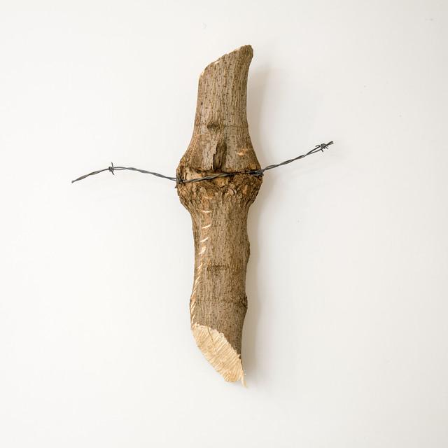 Charles Harlan, 'Tree', 2014, M WOODS