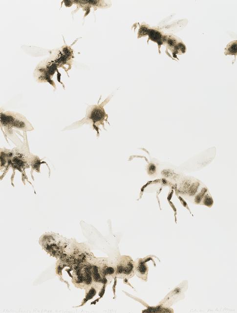 , 'Italian Honey Bees (Apis mellifera),' 2014, Parrish Art Museum
