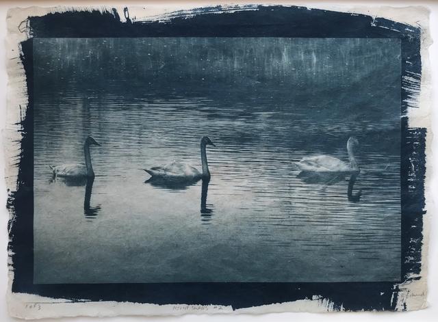 Randy Richmond, 'Night Swans #2', 2019, Olson Larsen Gallery