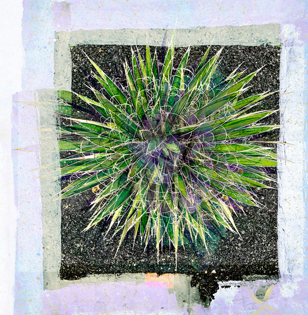 Valda Bailey, 'Supernova', 2012-2019, Sohn Fine Art