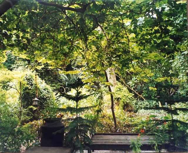 , 'Garden,' 2002, Vivian Horan Fine Art