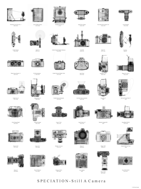 , 'Speciation of Cameras Typology,' 2018, Panopticon Gallery