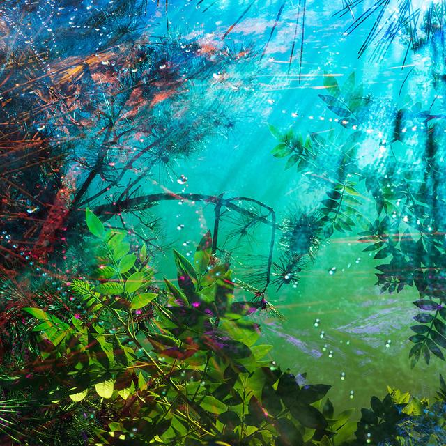 , 'Untitled #11, from the series Heterotopia,' 2014, Crane Kalman Brighton