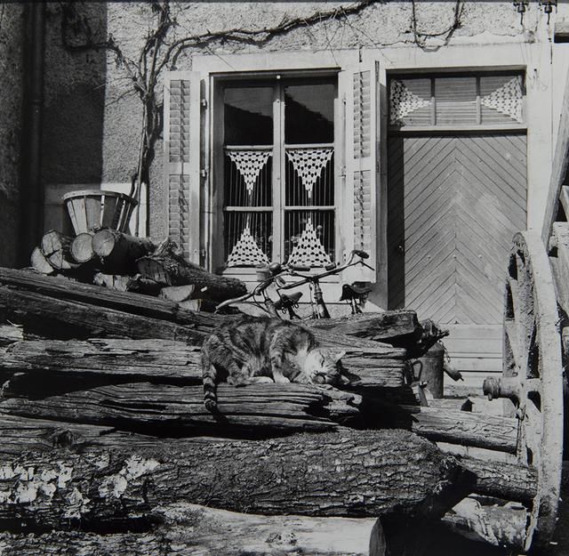 , 'Chat et rideaux,' 1953, Blum & Poe