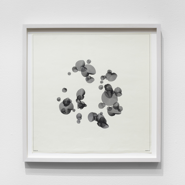 , 'P-062-A,' 1970, bitforms gallery