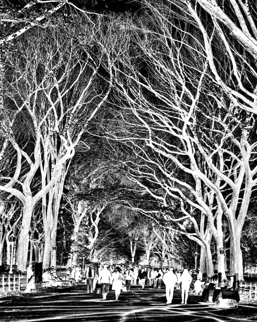 , 'Inverted Central Park,' 2019, Andrew Prokos Gallery