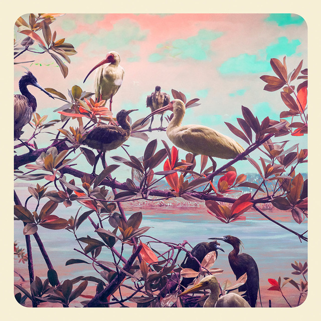 , 'River Birds,' 2017, KLOMPCHING GALLERY