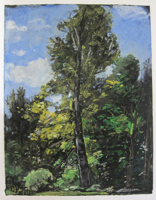 , 'Birch East Barnard,' 1984, John Davis Gallery
