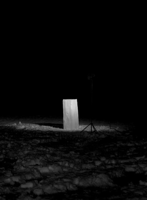 , 'Behauptungen - Natures,' 2010, Christinger De Mayo