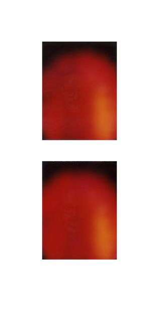 Francesca Grilli, 'Golden Age_Harald_#1#2', 2016, Photography, Polaroids, color, Umberto Di Marino