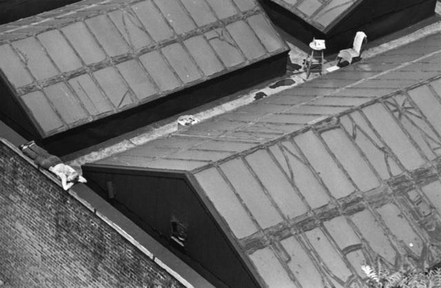 André Kertész, 'New York Painter on Roof', 1977, Holden Luntz Gallery