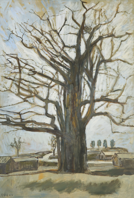 , 'Maidenhair Tree in Ganghwa Island,' 2012, Hakgojae Gallery