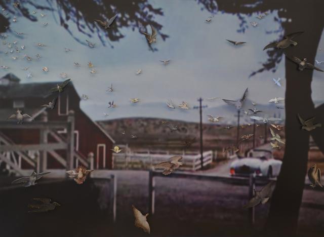 , 'The Birds VIII,' 2016, Kuckei + Kuckei