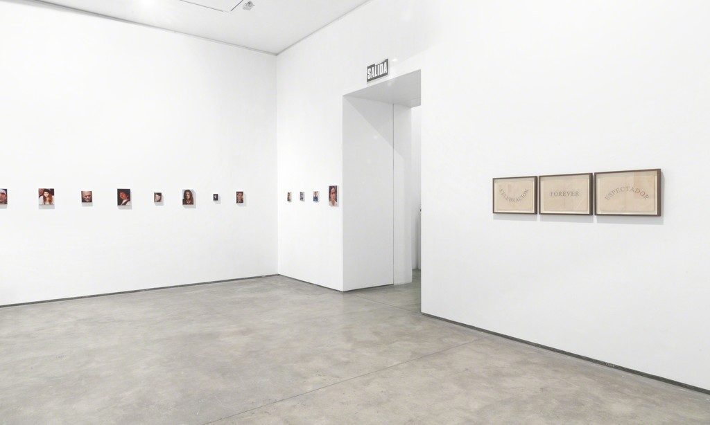 View of series Pictor by Miguel Aguirre and Celebration by Jose Luis Martinat @Galeria Lucia de la Puente, 2015