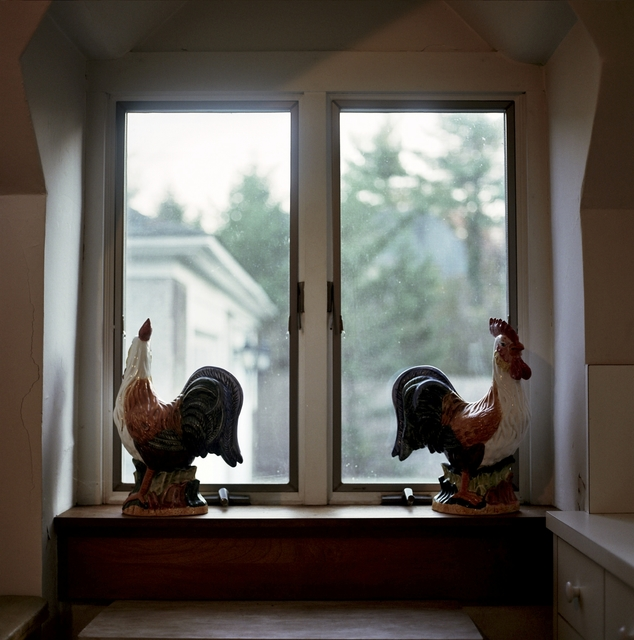 , 'Roosters,' 2016, Soho Photo Gallery