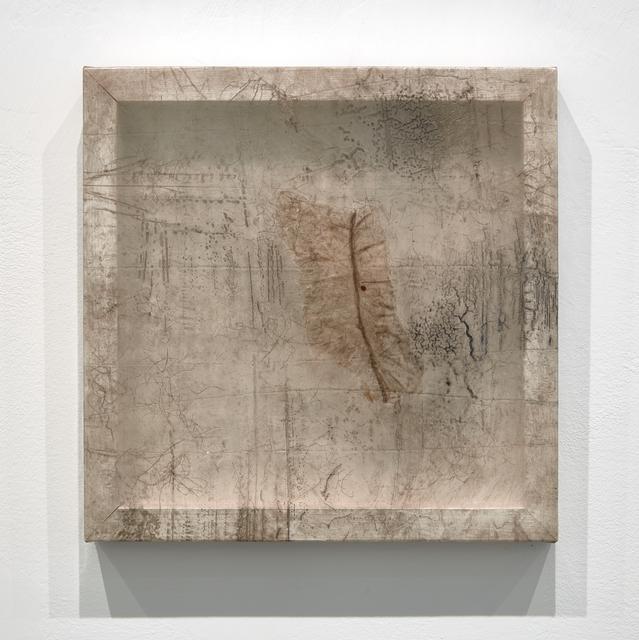 , 'Remnant (Seal Intestine),' 2016, Minus Space