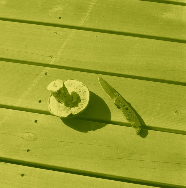 Thomas Macker, 'Mushroom and Knife on Porch', 2011, Klowden Mann