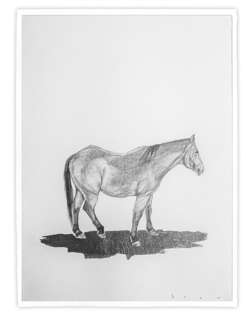 , 'The Pale Face Horse,' 2017, Treason Gallery
