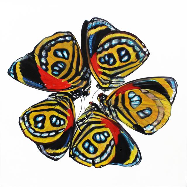 , 'Moths,' 2016, BoxHeart