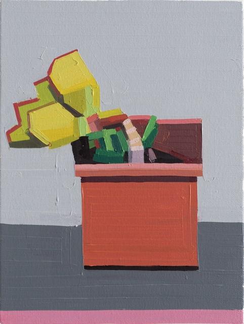 Guy Yanai, 'Plant in Salina', 2018, Flatland Gallery
